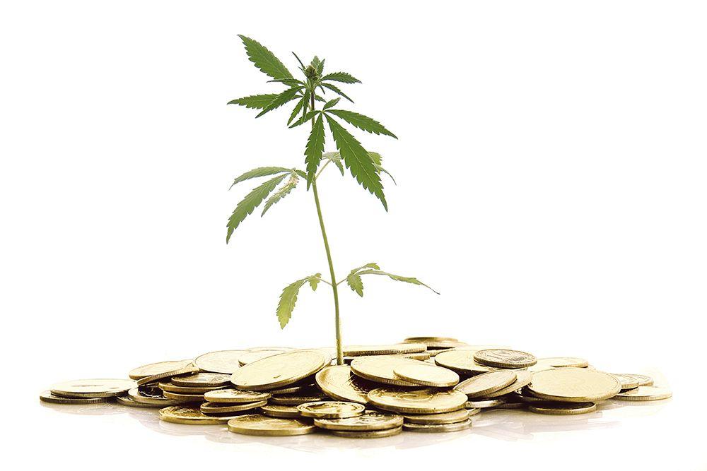 Marijuana Stocks Canada