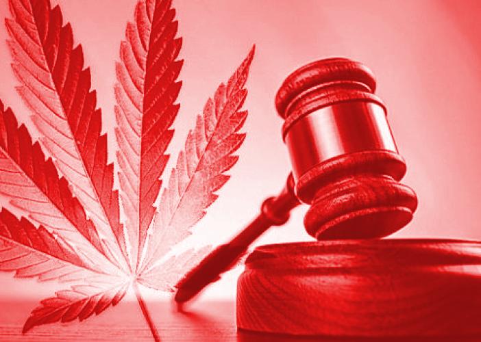 Medical Marijuana Policy